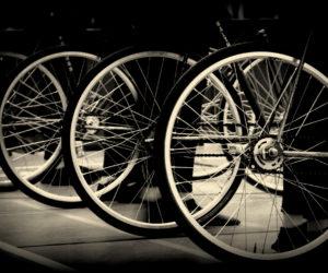 Bund Deutscher Radfahrer sagt Saison 2020 ab